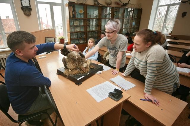 Зоотехники изучают физиологию животных