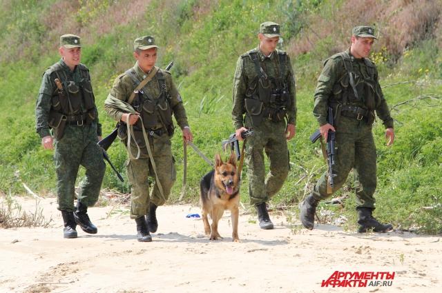 На российско-украинской границе — в дозоре с собакой Сарой.