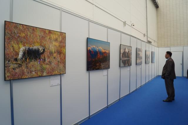 На выставке было представлено 150 самых лучших работ.