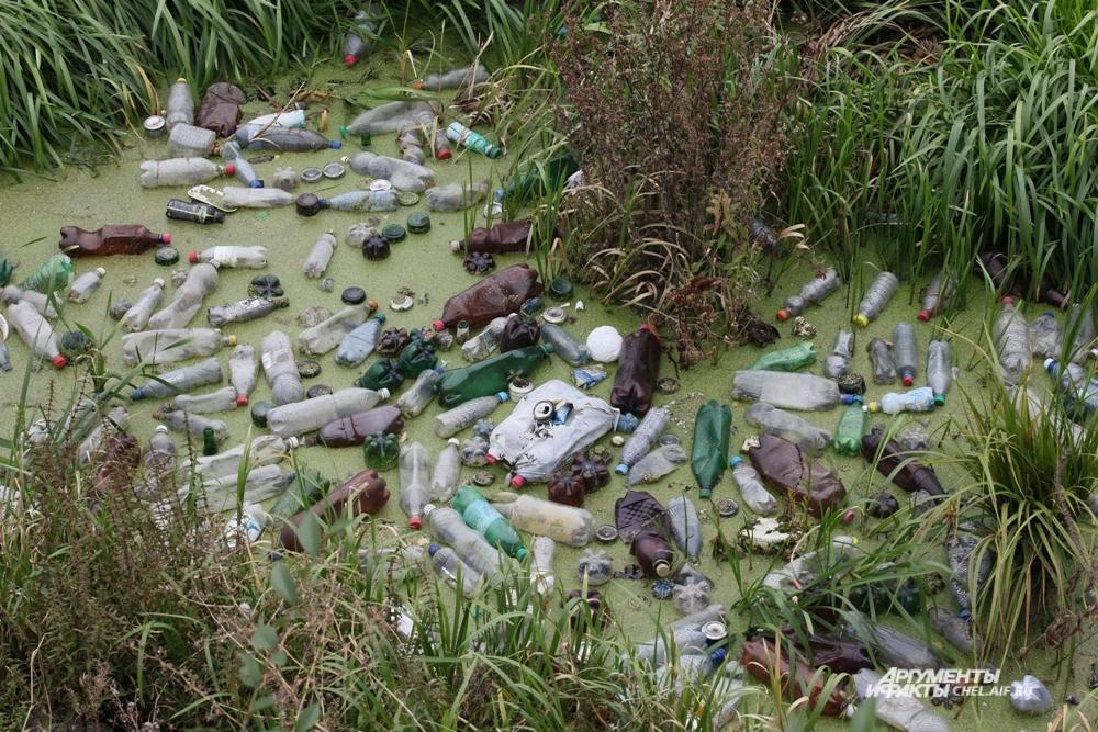 Самые крупные и инновационные проекты по сохранению окружающей среды не будут эффективными без экологического воспитания населения. Ведь ущерб природе, подобный показанному на снимке, наносят не крупные производства, а население.