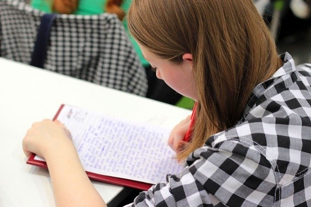Волонтёром можно стать только после сдачи экзамена.