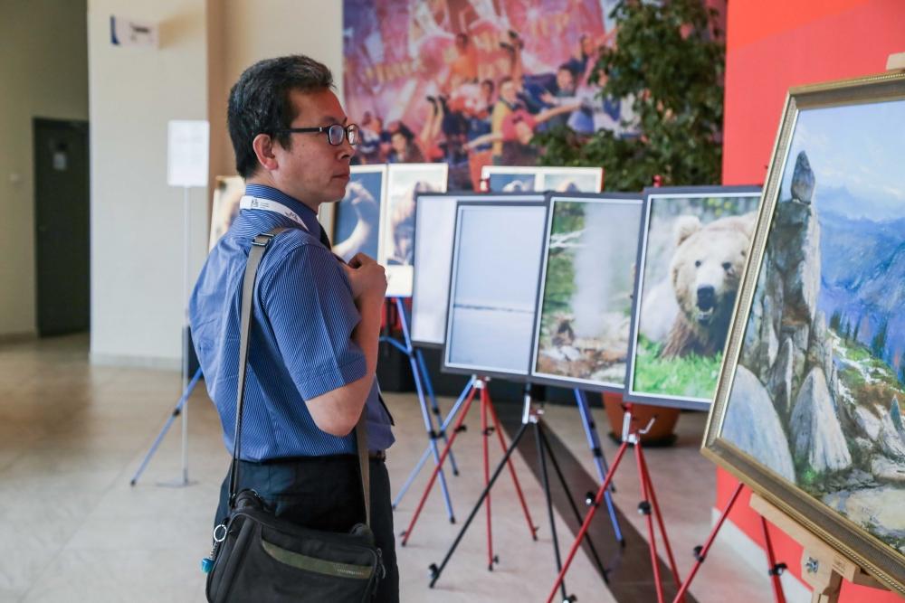 Выставки на экологические темы вызывают интерес жителей и гостей края.