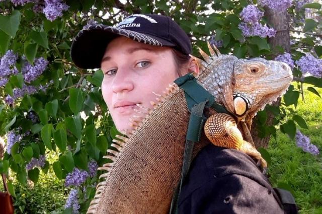 Прогулки в парке ящерица любит, но уверенно чувствует себя только на плече хозяйки.