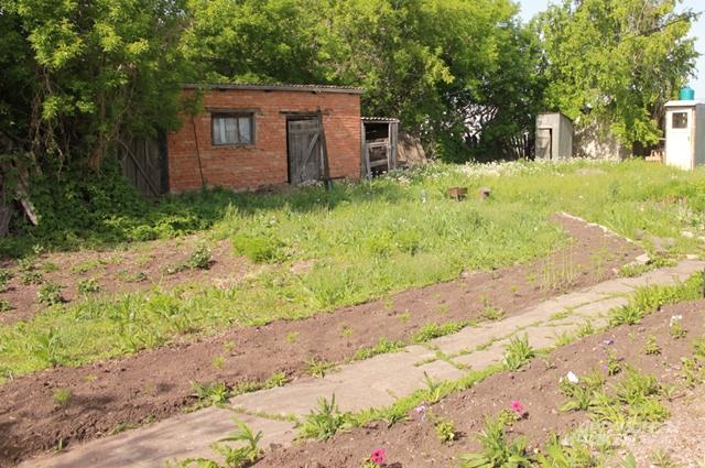 Садом Владимир заниматься не успевает, летом просто скашивает траву