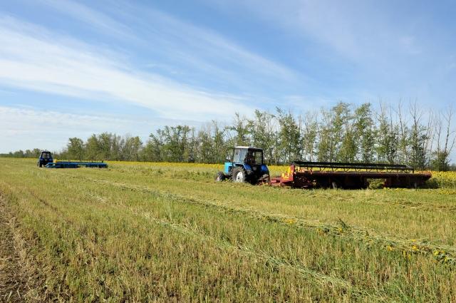 Растениеводство - самая крупная отрасль аграрного сектора.
