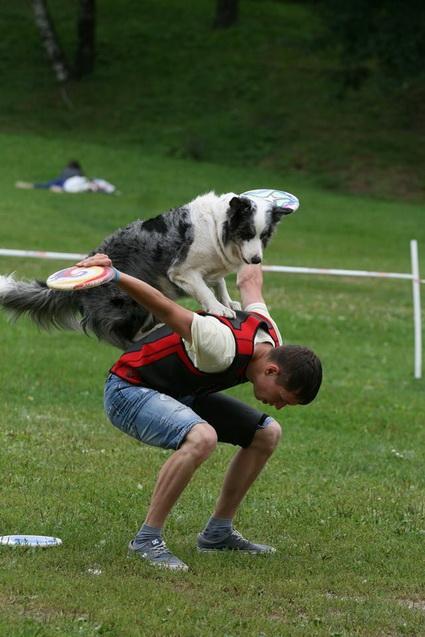 Собаке нужно уделять много времени.