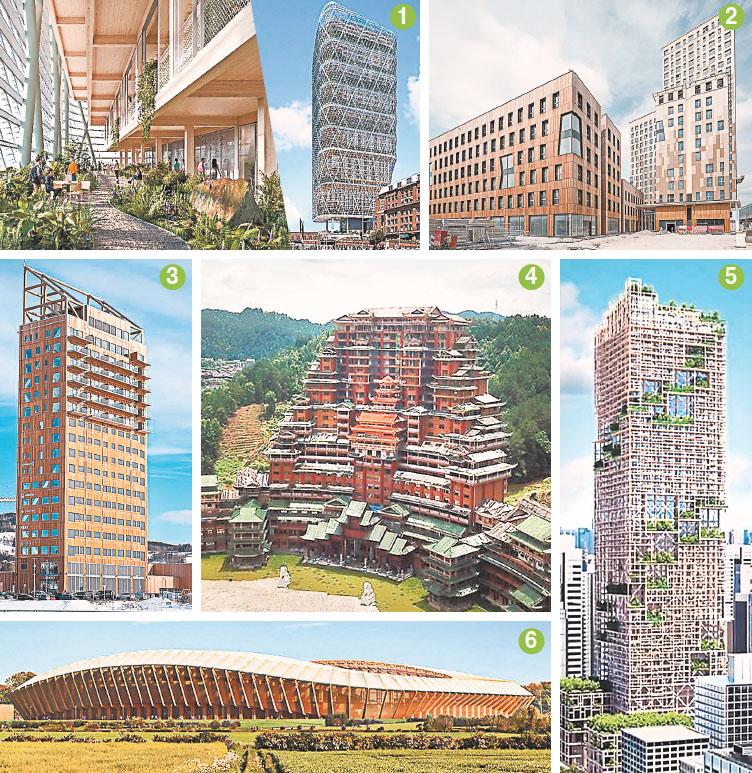 Можно ли из дерева строить небоскрёбы?
