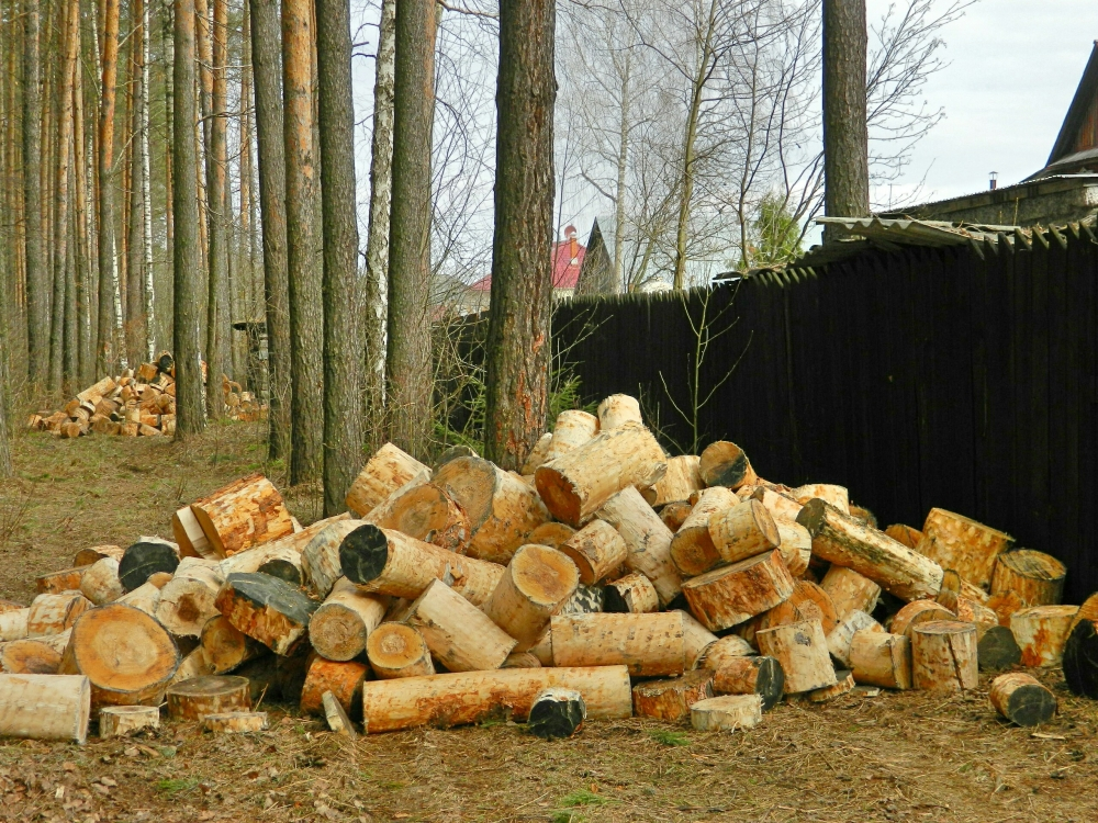 Людям из группы риска не придётся решать проблемы с дровами.