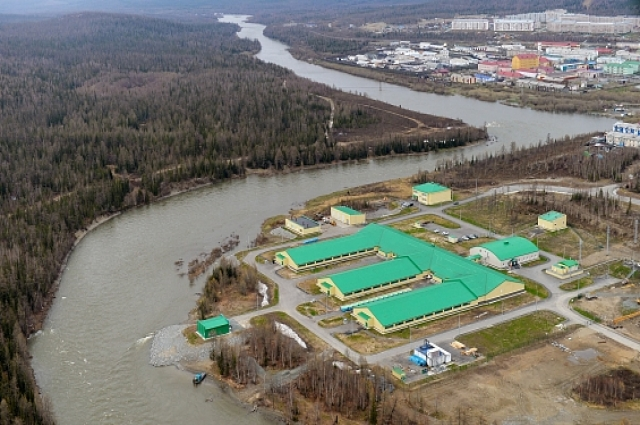 Проектная мощность завода – 141 млн штук мальков в год. Первоочередная задача – воспроизводство ценных видов рыб на Ямале