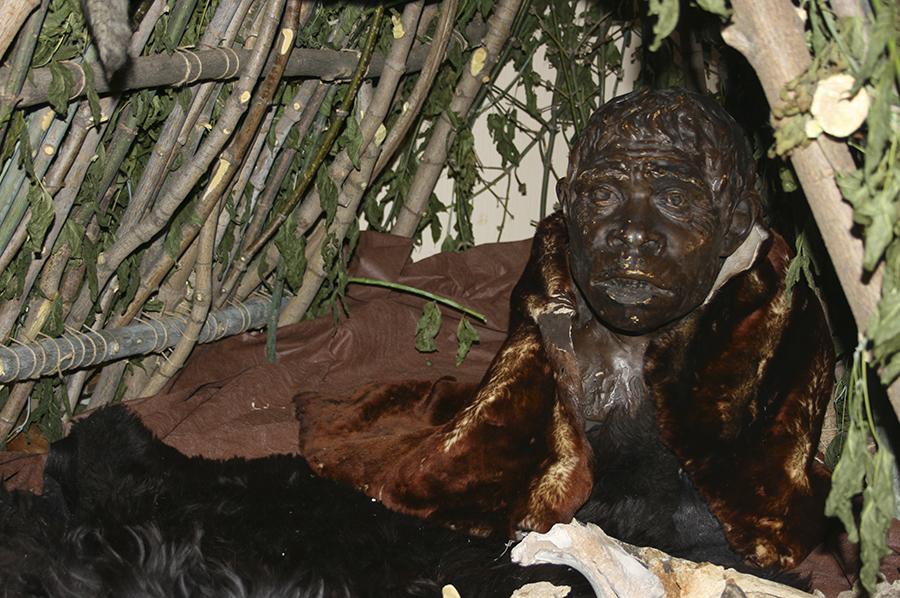Примерно так выглядели неандертальцы.