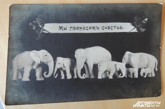 Слоны, по поверью, приносят счастье.