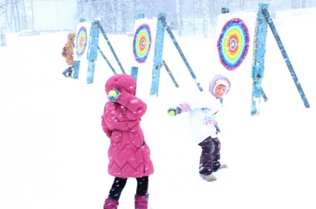 метание снежков, Всероссийский день снега