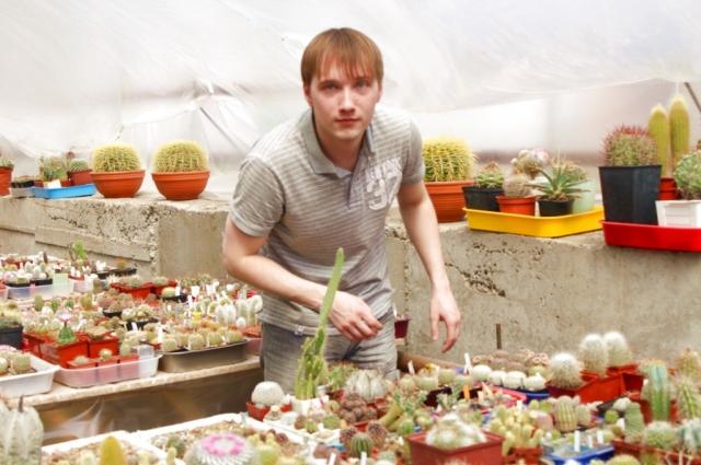 Игорь Пугач и его кактусы