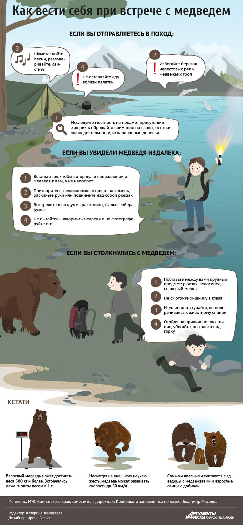 Инфографика «Как вести себя при встрече с медведем»