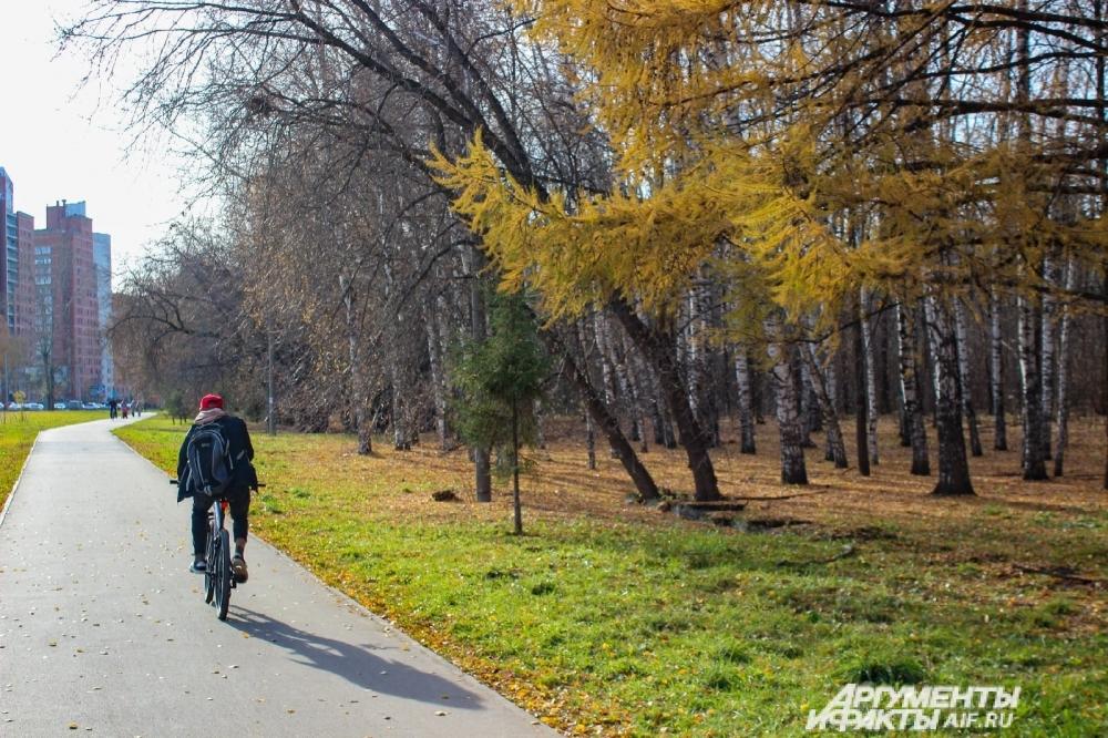 Велосипдисты тоже ловят момент. Крутить педали в такую погоду - одно удовольствие.