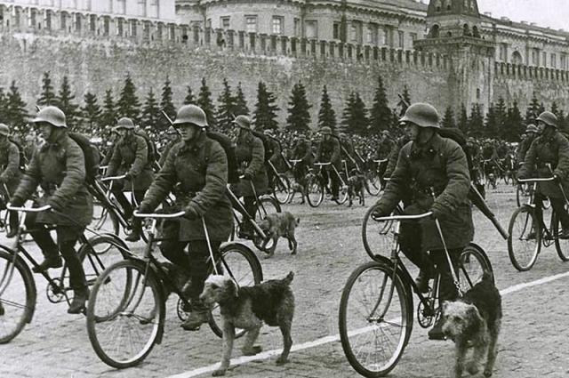 Велосипедные военные собаководы. Парад на Красной площади, Москва, 1 мая 1938.