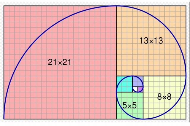 Спираль Фибоначчи и «золотые» прямоугольники.