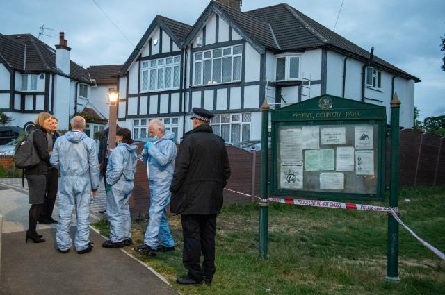 Судмедэксперты и полиция у входа в загородный парк Фрайент, где были убиты две женщины, Уэмбли, Лондон, Великобритания.