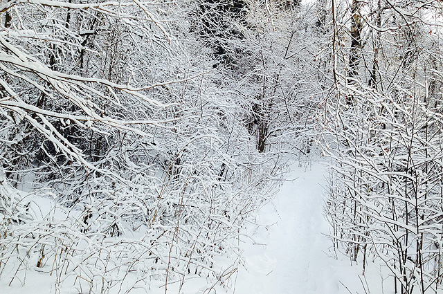 Грех пропускать такую красоту, боясь замерзнуть!