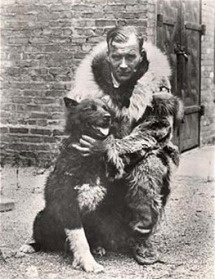 Балто вовремя доставил медикаменты людям на Аляске.