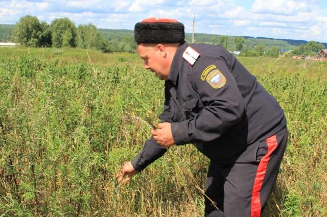 Полицейские провели совместный рейд вместе с казаками.