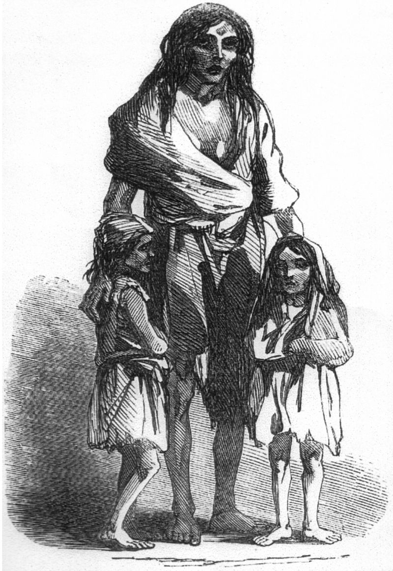 Великий голод. Гравюра, изображающая Бриджит О'Доннелл, изгнанную с детьми из дома за неуплату арендной платы.