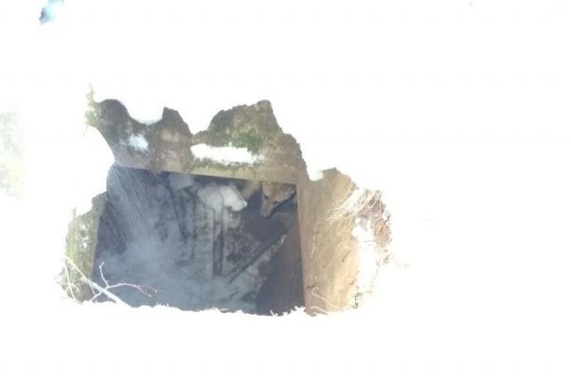 Животное провалилось в заброшенную овощную яму глубиной три метра.
