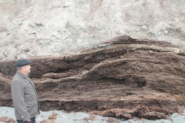 Запасы торфа на Митогинском месторождении составляют около 300 млн тонн.