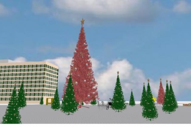 Вокруг главной 25-метровой елки расположится настоящий лес хвойных красавиц.
