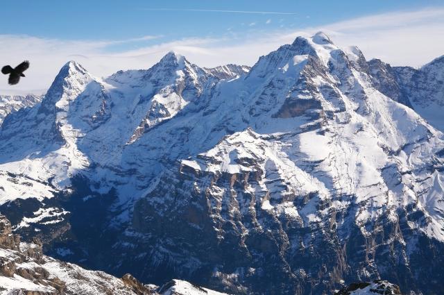 Альпы потрясли путешественника.