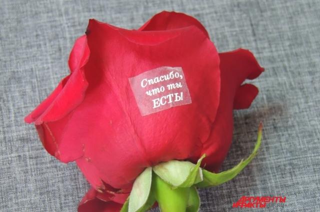 Последняя новинка переводки на лепестки цветов