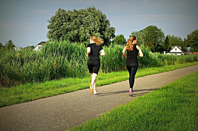 В тёплое время года можно устраивать ежедневные пробежки.