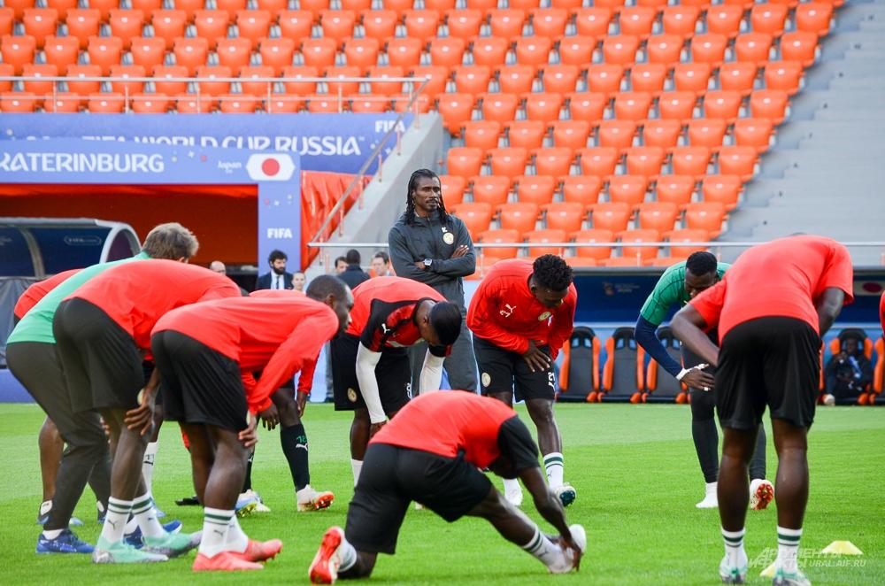 Открытая тренировка сборной Сенегала на Екатеринбург Арене