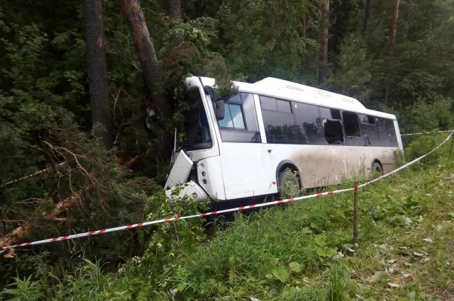 По данным администрации Пермского края, в аварию попал автобус нелегального маршрута.