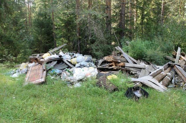 По словам активистов, в пригороде Кирова еще много подобных свалок.
