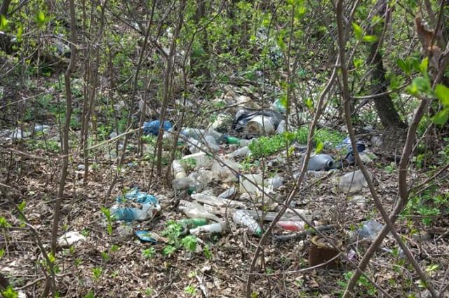 Волонтеры –экологи чистят лесопарк от бытового мусора, который оставили местные жители