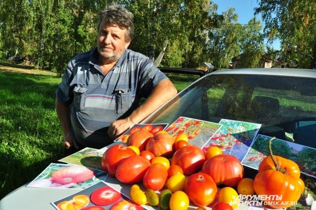 О томатах Владимир Андерсен знает всё и немного больше - научную работу он ведёт уже 17 лет.