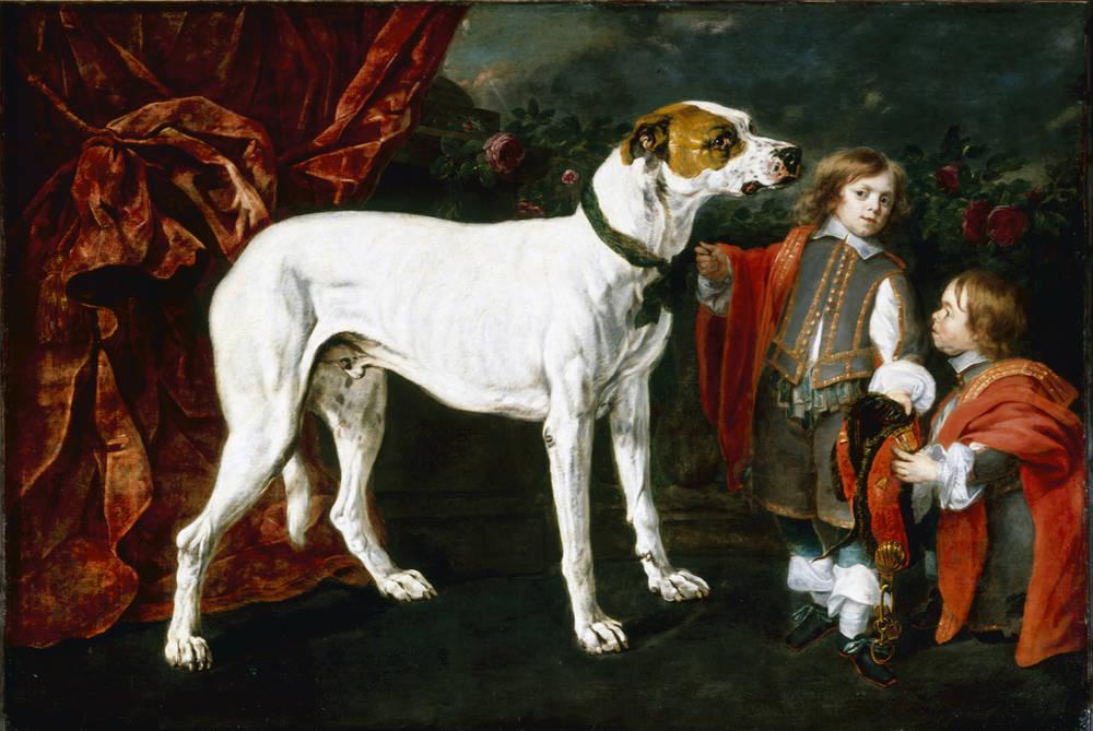 Ян Фейт. Большая собака, мальчик и карлик.