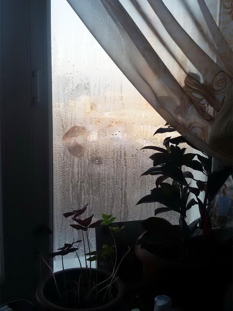 В комнате очень сильная влажность.
