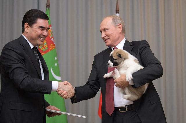 Лидер Туркмении поздравил российского коллегу Владимира Путина с днем рождения и подарил ему щенка алабая.