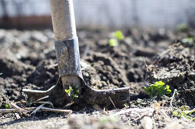 Огород для многих - место и для труда, и для отдыха.