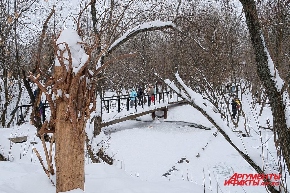 Поражает биоразнообразие парка.