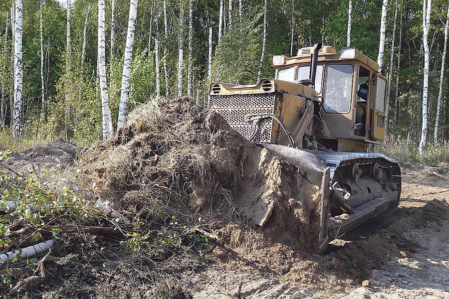 Идёт работа по раскорчёвке и подготовке площади  к лесовосстановлению.
