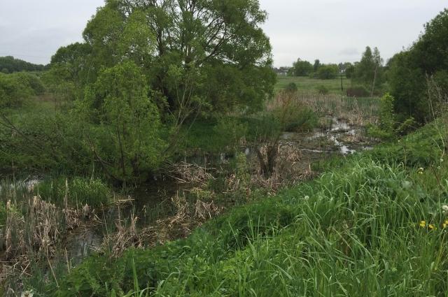 Русло реки нужно расчистить и углубить, чтобы вода текла бустрее.