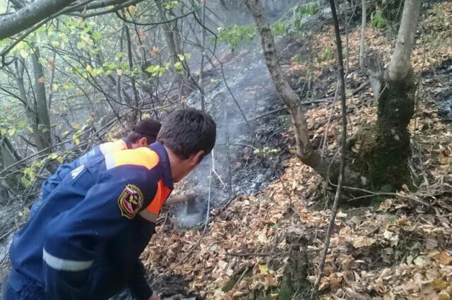 Горит лес в Рутульском районе