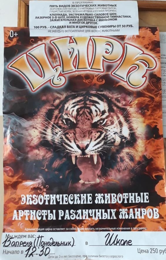 Афиша цирка в одной из школ Волгоградской области.