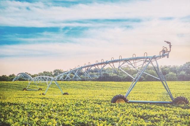 Уже в этом сезоне на полях хозяйства организуют современную систему полива.