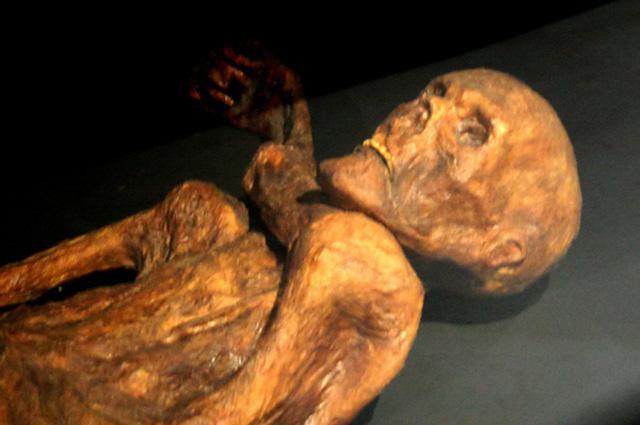 Эци — ледяная мумия человека эпохи халколита, обнаруженная в 1991 году в Эцтальских Альпах в Тироле.