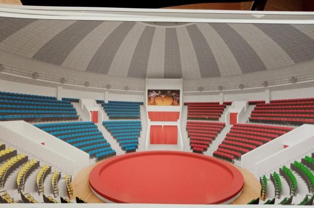 Такой будет арена - сохранится деление секторов по цвету.