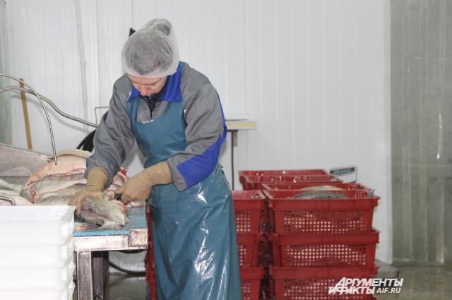 Обрезку филе делает самый опытный работник предприятия